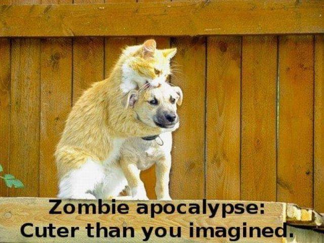 zomibe-apocalypse-cute